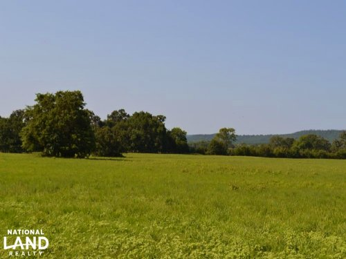 261 Acre Cattle Farm & Recreational : Branch : Franklin County : Arkansas