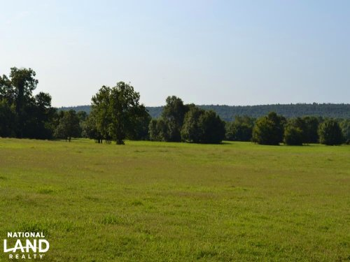 300+/- Acre Cattle & Hay Farm : Caulksville : Logan County : Arkansas