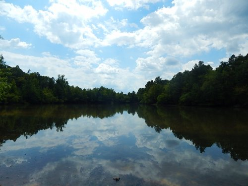 4.3 Acre Lake. : Monticello : Jasper County : Georgia