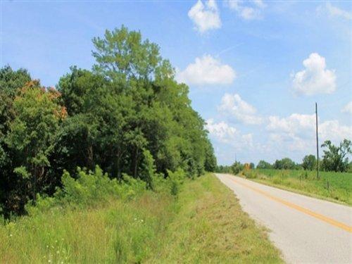 10.89 Acres Cumberland Ridge Ranch : Burkesville : Cumberland County : Kentucky