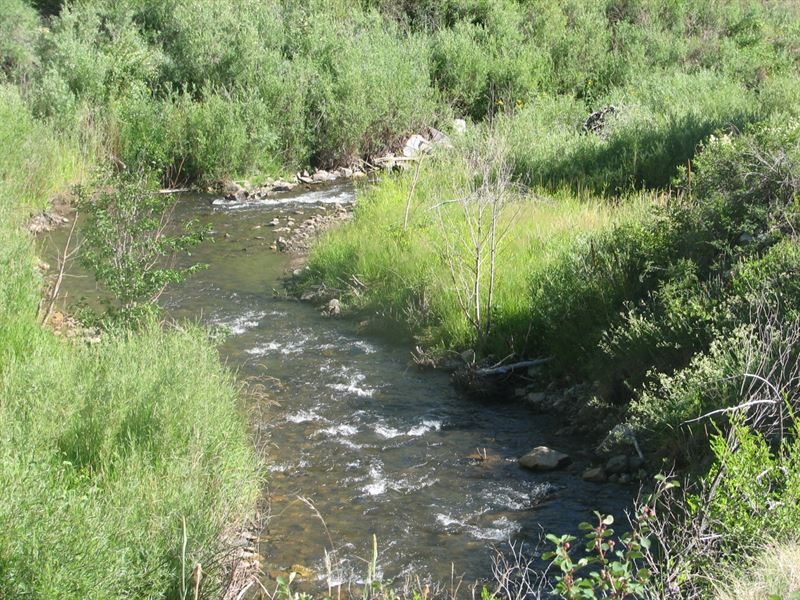 8266994 - Acreage With Great Buildi : Poncha Springs : Chaffee County : Colorado