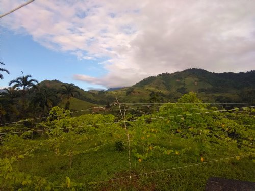 9.40 Ac. Farm With Cabin, Springs : Pejibaye De Cartago : Costa Rica