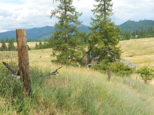 Rolling Hills Harrison : Coeur D'alene : Kootenai County : Idaho