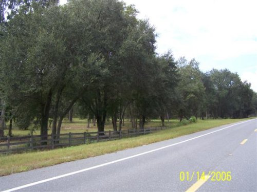 68.93 Acres With Paved Rd Frontage : Lee : Madison County : Florida