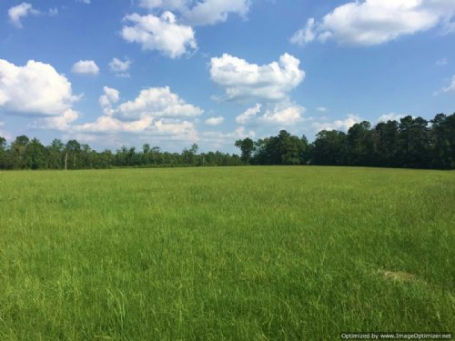 Lot 4 - 2.7± Acres : Brookhaven : Lincoln County : Mississippi