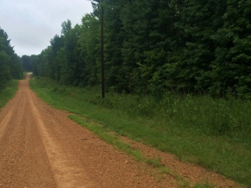 70 Acres For Sale : Shuqualak : Noxubee County : Mississippi