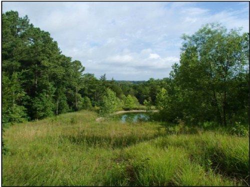 53.77 Acres In Oktibbeha County : Starkville : Oktibbeha County : Mississippi