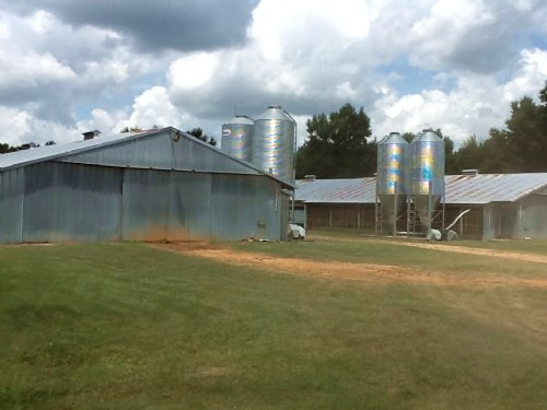 Cobb Ln Chicken Farm W House : Georgiana : Butler County : Alabama