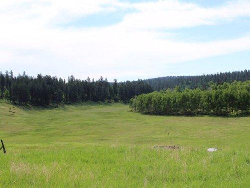 Popham Acreage : Newcastle : Weston County : Wyoming