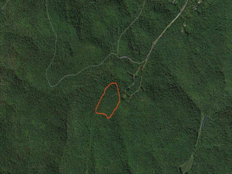 Acreage For Custom Home : Monterey : Putnam County : Tennessee