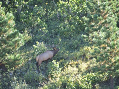 571 Acres : Stonewall : Las Animas County : Colorado