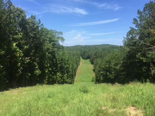 59.04 +/- Wooded Acres, Dallas : Dallas : Paulding County : Georgia