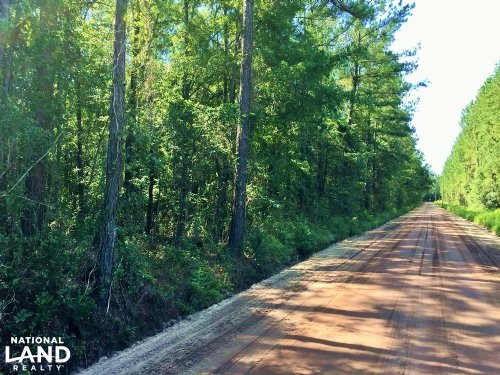 Waverly Homesite : Waverly : Camden County : Georgia