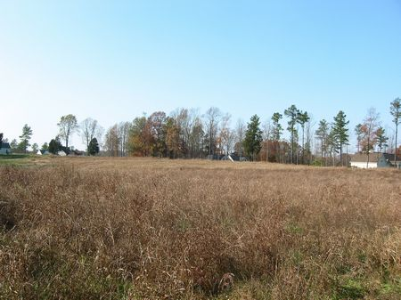 2.3 Acres In The Country : Pittsboro : Chatham County : North Carolina