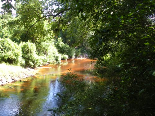 Styx River Near Loxley : Loxley : Baldwin County : Alabama