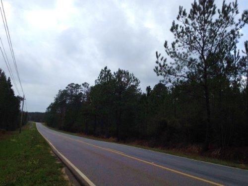 Seed Orchard Rd : Robertsdale : Baldwin County : Alabama