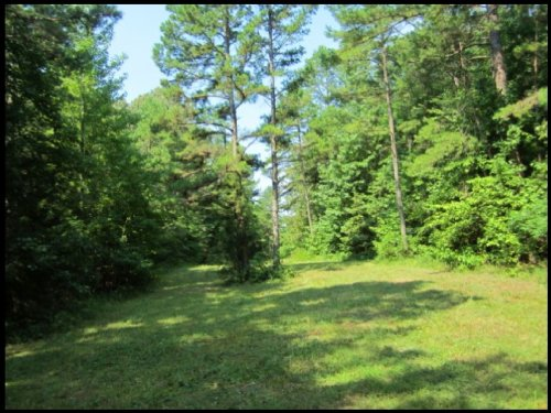 10 Acres In Marshall County : Holly Springs : Marshall County : Mississippi