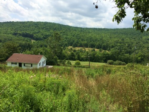 70 Acres Timberland W/ Hunting Camp : Woodhull : Steuben County : New York