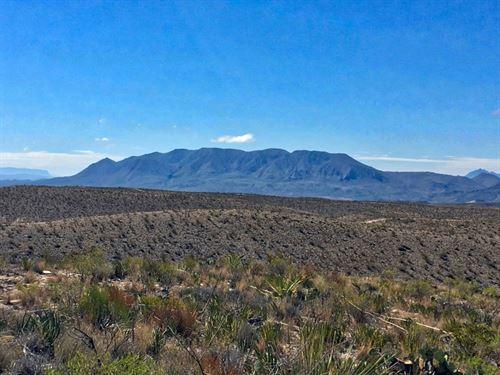 Remote 40 Acre Tract : Terlingua : Brewster County : Texas