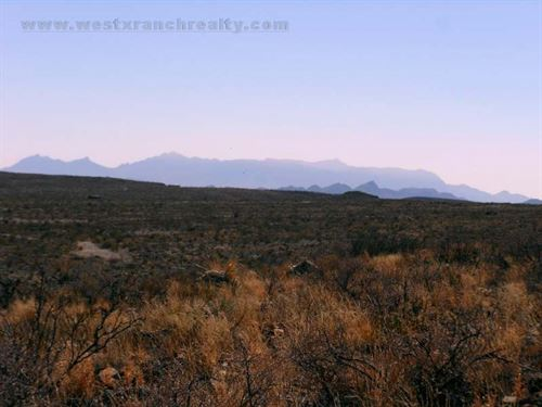 21 Acre Hunting Property : Terlingua : Brewster County : Texas