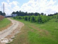 NC Vineyard And Hog Nursery Investm : Willard : Sampson County : North Carolina