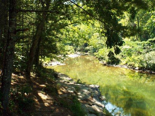 Mountain Property W/ Creek Frontage : Oakdale : Morgan County : Tennessee