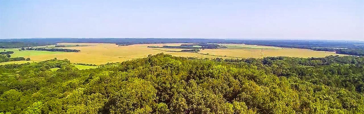 1400 Acres Hunting Land