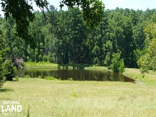 Estate/Ranch Property : Trinity County : Texas