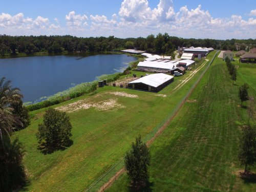 Active Lakefront Nursery On 20± Ac : Apopka : Orange County : Florida