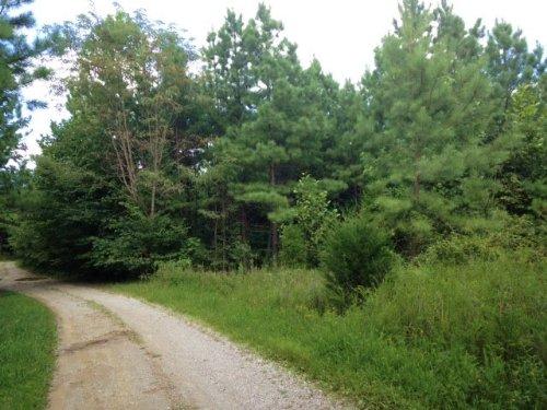 Newton 55 : Caneyville : Grayson County : Kentucky