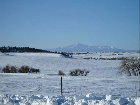 810A-Prime Development Land (T1319) : Elizabeth : Elbert County : Colorado