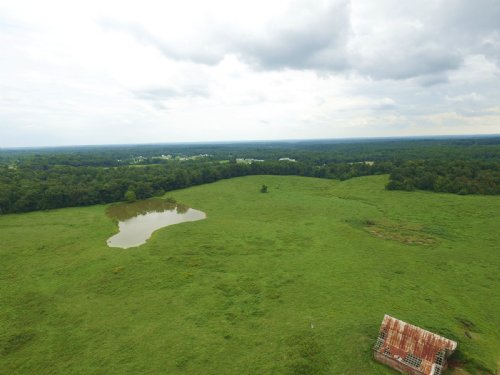 132 Acres With Huge Potential : Bon Aqua : Hickman County : Tennessee