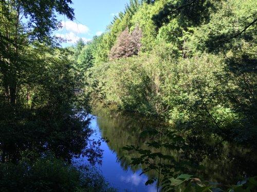 Fish Creek Riverfront : Williamstown : Oswego County : New York