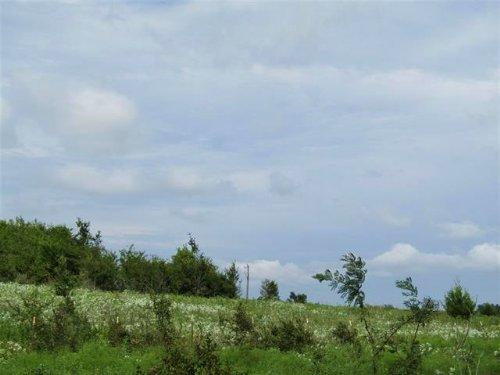 4 Acres / 30286 : Hugo : Choctaw County : Oklahoma