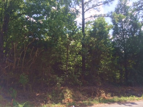5 +/- Wooded Acres, Tract 2 : Cartersville : Bartow County : Georgia