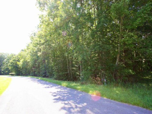 4.02 Acre Lot Zoned B3 : Beaverdam : Hanover County : Virginia