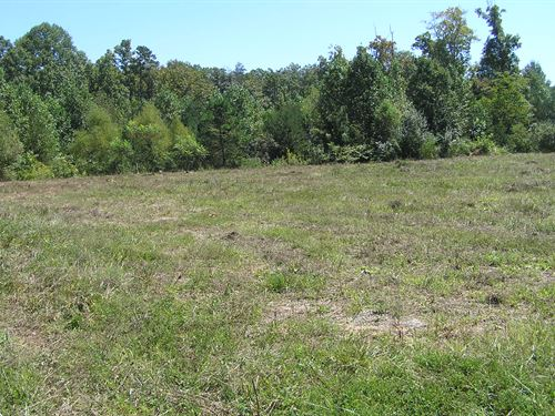 4 Acres With No Restrictions : Altamont : Grundy County : Tennessee