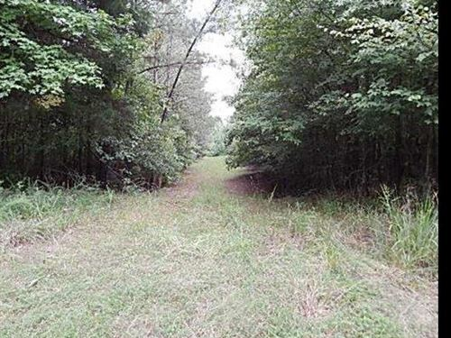 180 Acres In Carroll County : Carrollton : Carroll County : Mississippi