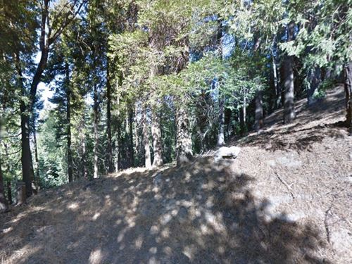 .06 Acres In Crestline, CA : Crestline : San Bernardino County : California