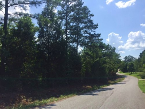 19.348 +/- Wooded Acres, Tract 4 : Cartersville : Bartow County : Georgia