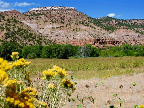 Cottage Rock Ranch : Canon City : Fremont County : Colorado