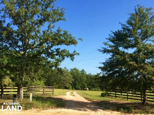 Farmland With Brick Home : Mauk : Marion County : Georgia
