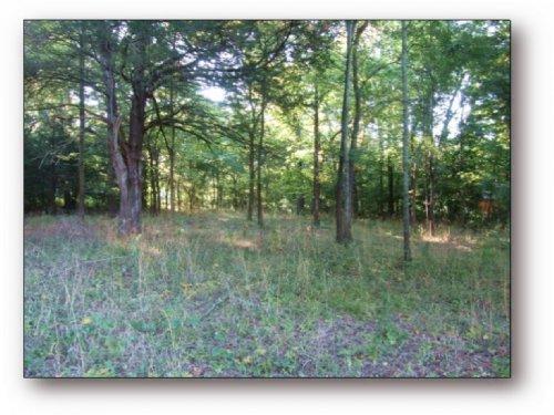 Magnolia Heights Lot In Oktibbeha C : Starkville : Oktibbeha County : Mississippi