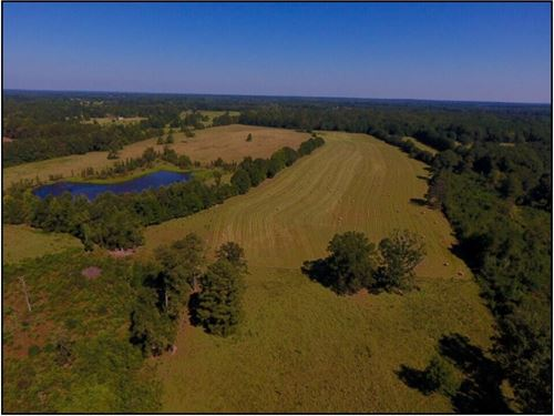 240.5 Acres In Neshoba County In Ph : Philadelphia : Neshoba County : Mississippi