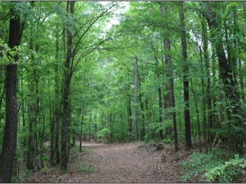 198 Acres In Lauderdale County : Meridian : Lauderdale County : Mississippi