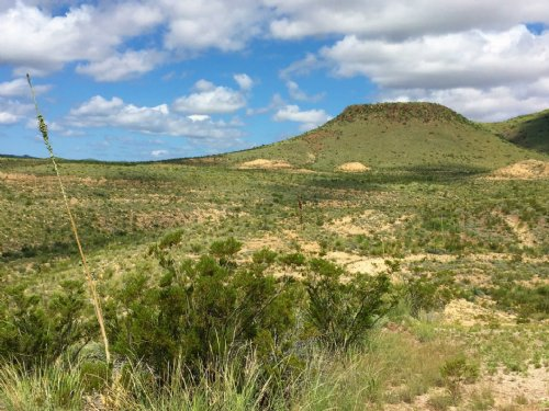 260 Acre Hunting Ranch : Terlingua : Brewster County : Texas