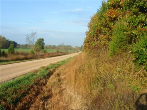5.01 Acres Valley View Ranch : Salem : Dent County : Missouri