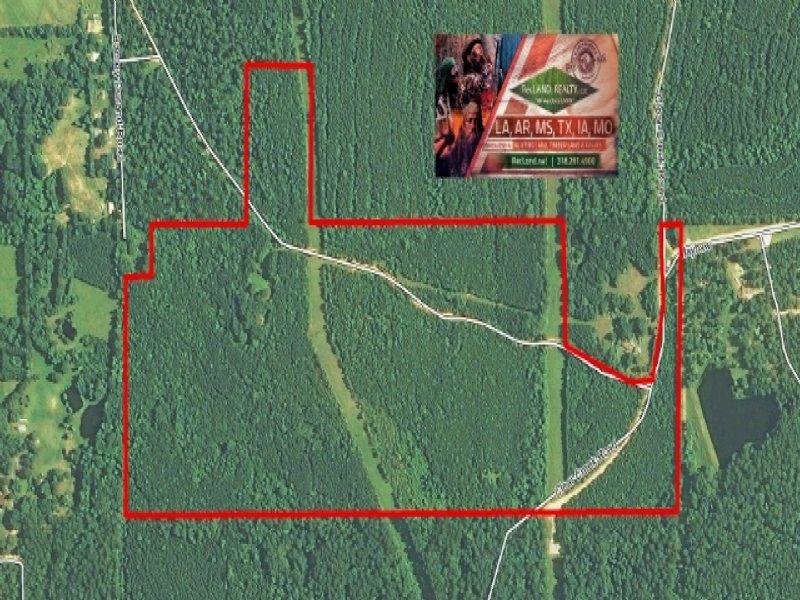131.5 Ac - Timberland With Rural Ho : Ball : Grant Parish : Louisiana