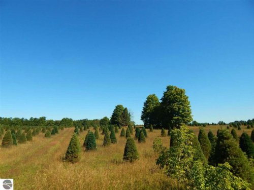 40 Acre Hunting And Farming Parcel : Mesick : Wexford County : Michigan