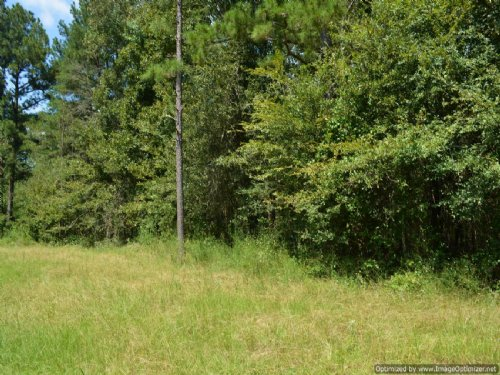 7± Ac Home/mobile Site : Puckett : Rankin County : Mississippi